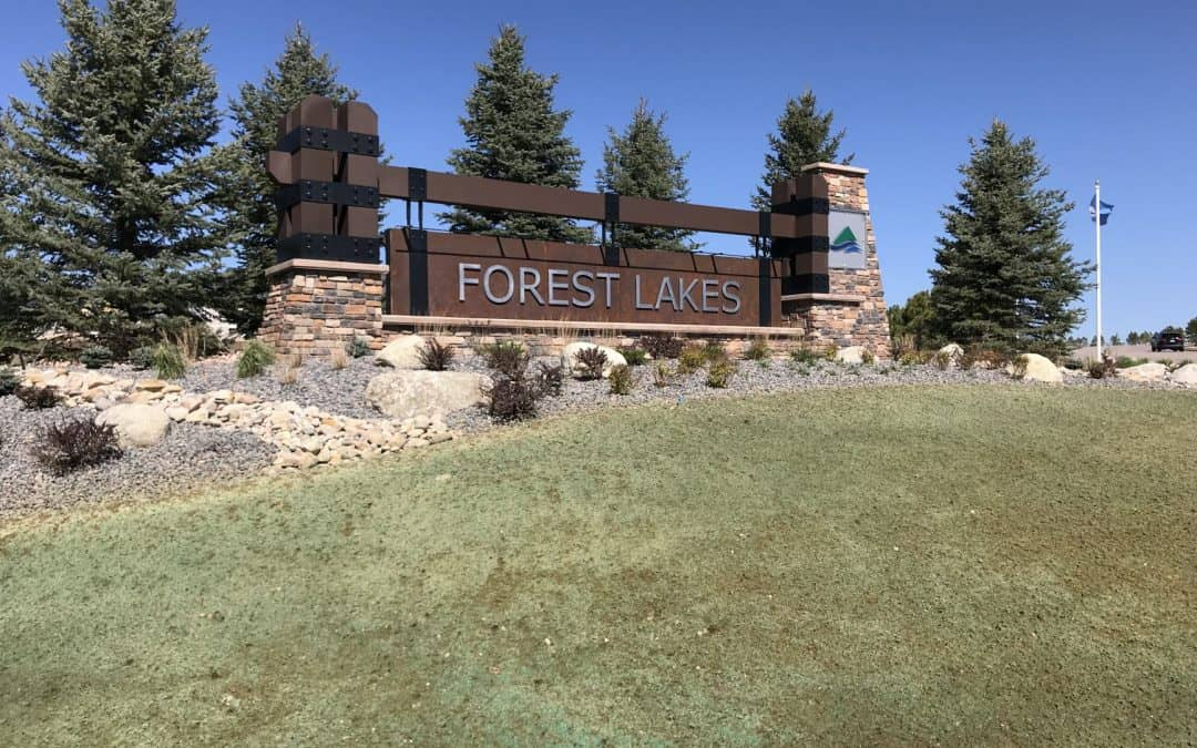 2019 Forest Lakes Homes Available for a Quick Move-In